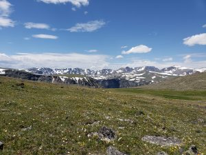Beartooth Mountain Pass