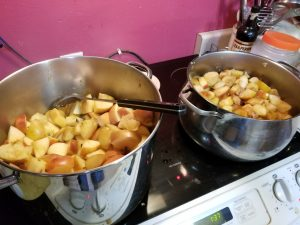 stove top applesauce